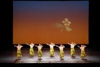 フラダンス159 lililehua2.jpg